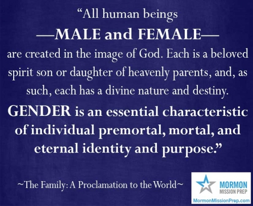 gender is an essential characteristic