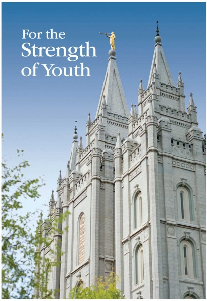 For The Strength of Youth Pamphlet